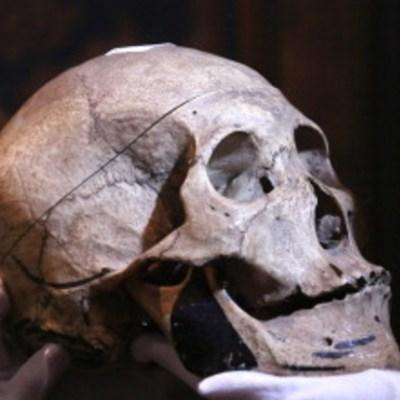 Sitúan en África del sur la tierra ancestral del humano moderno: Estudio
