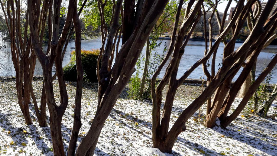 FOTO A tiempo para Acción de Gracias, ceden nevadas en EEUU (AP)