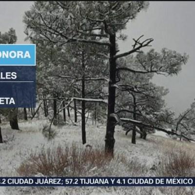 Ambiente gélido afecta Sonora