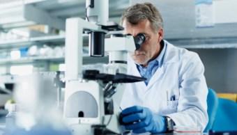Imagen: La edición genética es una forma de cambiar permanentemente el ADN para atacar las causas fundamentales de una enfermedad, 6 de noviembre de 2019 (Getty Images, archivo)