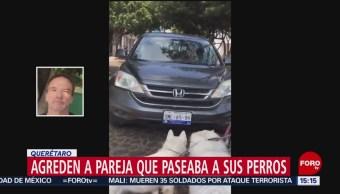 Foto: Extranjero Atropellar Mujer Perros Querétaro 3 de Noviembre