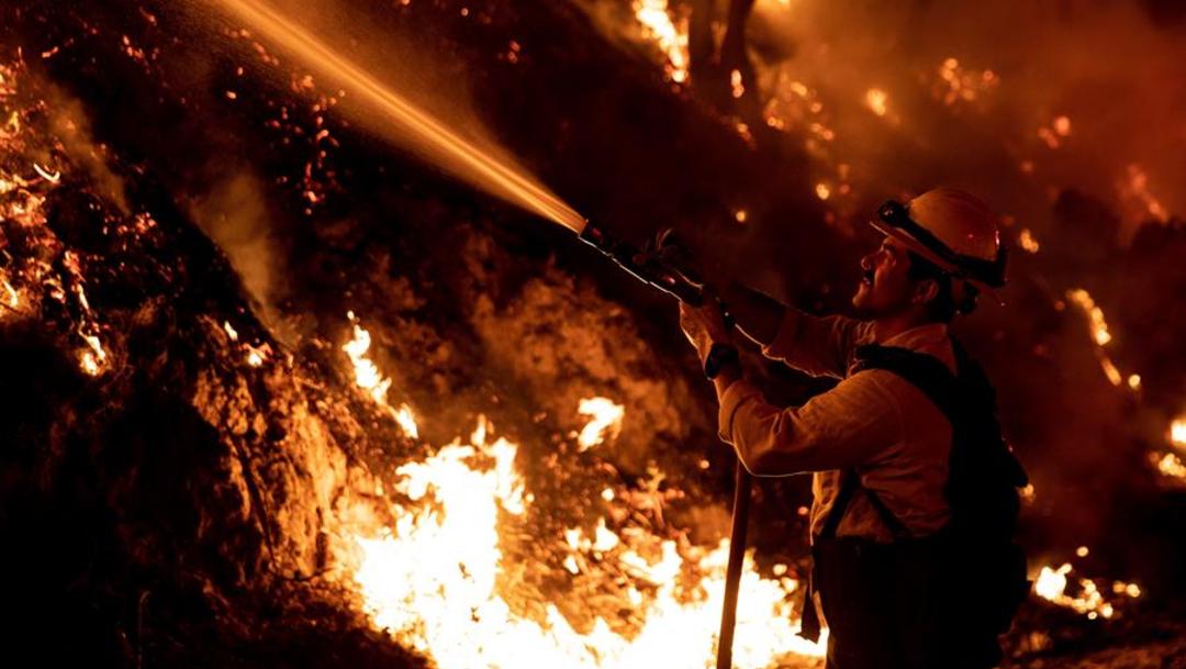 Imagen: Durante las últimas semanas, varios incendios han arrasado con cerca de 40.000 hectáreas, 3 de noviembre de 2019 (EFE)