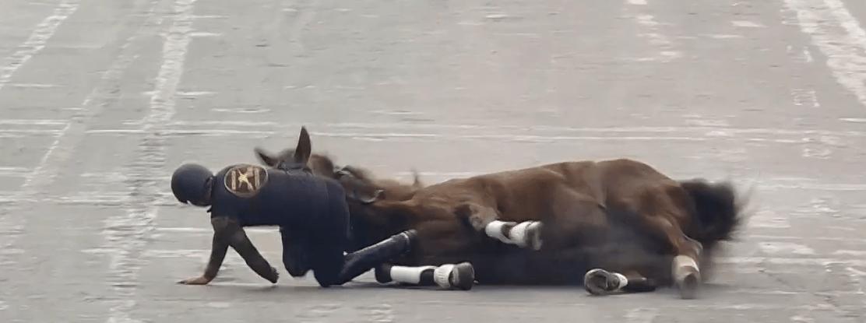 FOTO Jinete y caballo caen durante espectáculo ecuestre en el Zócalo CDMX (FOROtv)