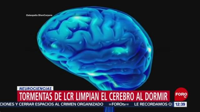 Líquido cefalorraquídeo limpia el cerebro al dormir