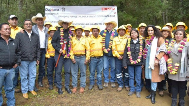 Foto: Autoridades federales y estatales supervisaron los trabajos para el combate de plagas forestales que afectan a los bosques de la región norte de la entidad