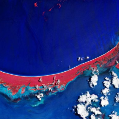 Imagen desde el espacio muestra zonas afectadas por sargazo en Holbox