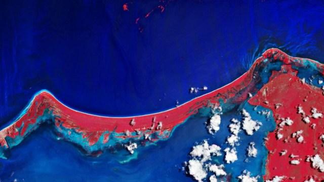 Foto: Vista desde el espacio de la isla de Holbox, afectada por la llegada de Sargazo, 10 noviembre 2019