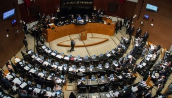 Foto: Senado repetirá votación para elegir al titular de la CNDH, el 12 de noviembre de 2019 (Foto: Andrea Murcia /Cuartoscuro.com)
