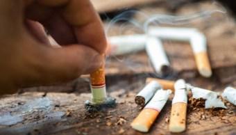 Imagen: El costo promedio anual del tratamiento de cáncer de pulmón es de 16 mil 537 dólares en el Instituto Mexicano del Seguro Social (IMSS), casi ocho veces que el de mama (dos mil 818 dólares)