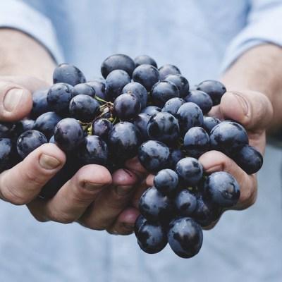 Uvas, el mejor regalo de año nuevo para el cuerpo humano