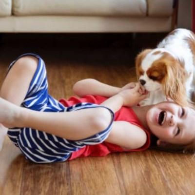 Tener perros desde la niñez reduciría riesgo de esquizofrenia
