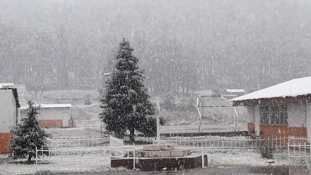 Se registra caída de nieve en municipio de Madera, Chihuahua