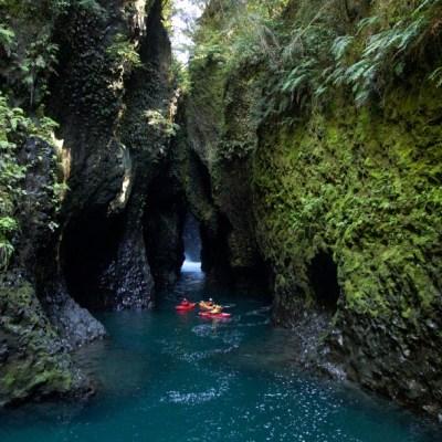 Yucatán, paraíso natural, pulmón de México