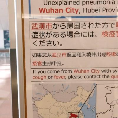 El coronavirus nació en china