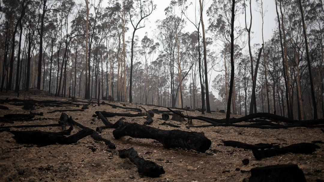 Foto: La disculpa de Scott Morrison llegó después de que el viernes miles de manifestantes salieron a las calles australianas para exigirle un plan de acción sobre el cambio climático