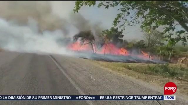 FOTO: autoridades de slp implementan medidas contra incendios forestales
