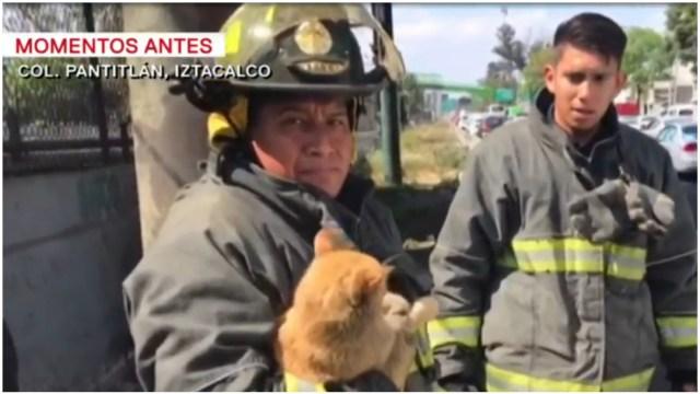 Foto: Bomberos rescatan a gato atrapado en malla del Metro, 25 de enero de 2020 (Foro TV)