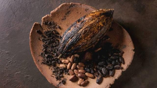 Las propiedades medicinales del cacao y chocolate
