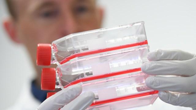Foto: Científicos en China inician el desarrollo de vacuna contra el coronavirus, 26 enero 2020