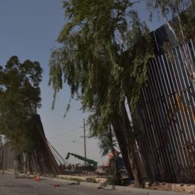 Cae muro de Trump por fuertes vientos en Mexicali
