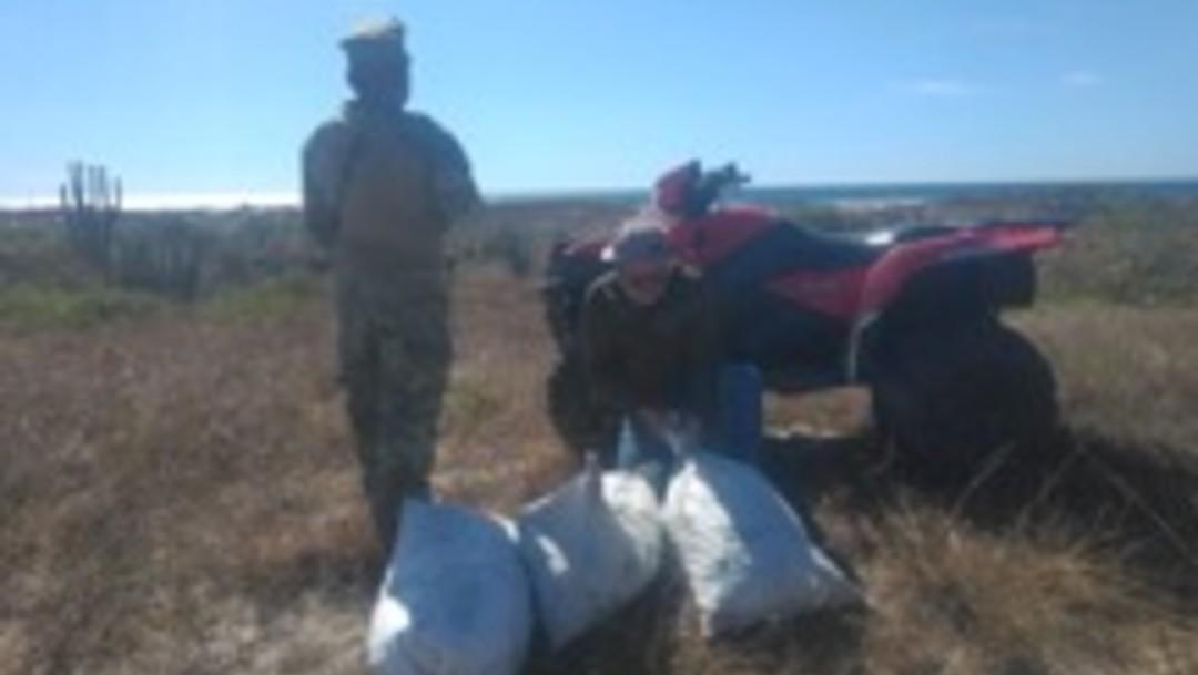 GN asegura 2 mil huevos de tortuga abandonados en Oaxaca
