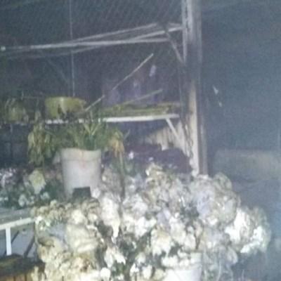 Doce locales del Mercado de las Flores de Xochimilco fueron consumidos por el fuego, 19 enero 2020