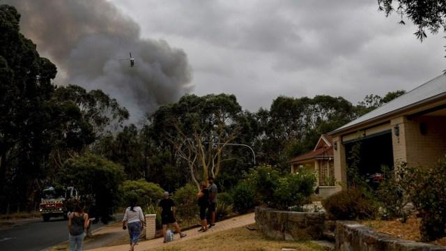 fOTO: Leve mejora en clima atenúa incendios en Australia, 5 enero 2020
