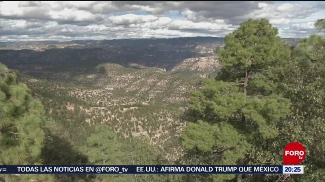 Foto: Chihuahua Municipios Reportan Temperaturas Congelantes 29 Enero 2020