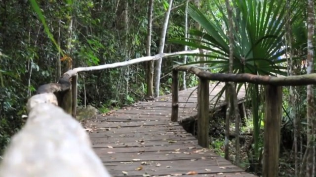 Foto: Promueven turismo respetuoso con el medio ambiente en Quintana Roo