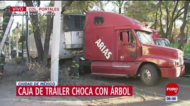 trailer choca con arbol en la cdmx