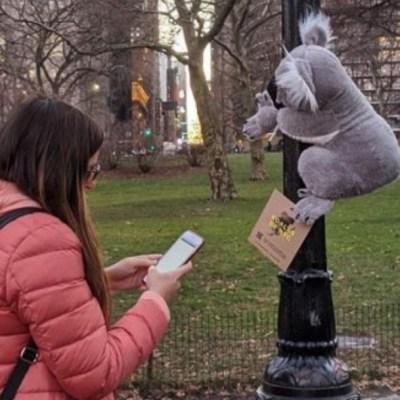 En Nueva York, koalas de peluche buscan ayuda para Australia