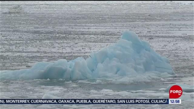 colapsa fragmento del glaciar william en la antartida