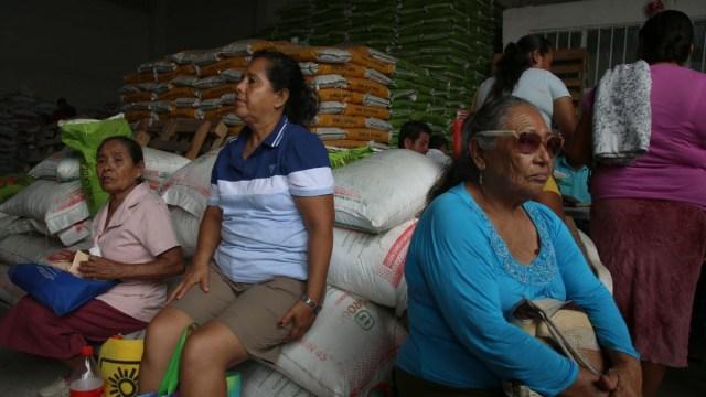 SFP detecta irregularidades en programa de fertilizantes