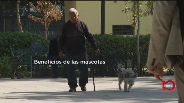 FOTO: 23 Febrero 2020, los animales de compania son de gran ayuda para los adultos mayores