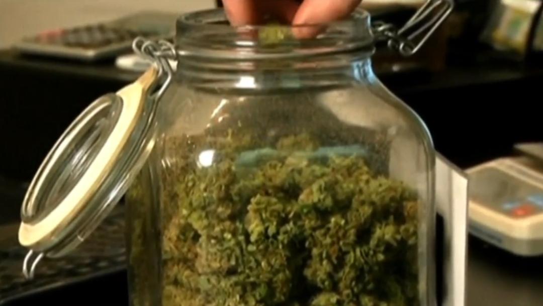 FOTO: Senado reanuda el análisis en torno a regulación de la marihuana, el 27 de febrero de 2020