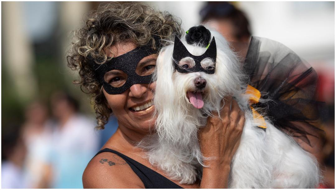 Foto: Batman dejó Ciudad Gótica para aterrizar en Río de Janeiro, 16 de febrero de 2020 (AP)