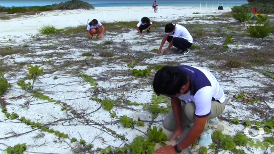 Foto: El proyecto inició ante la situación de vulnerabilidad de los manglares del norte de Yucatán, muchos de ellos con basura y algún grado de deterioro