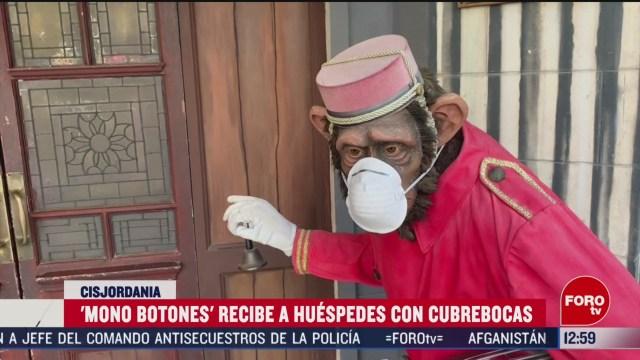 FOTO: banksy expone a mono con cubrebocas en su hotel de belen