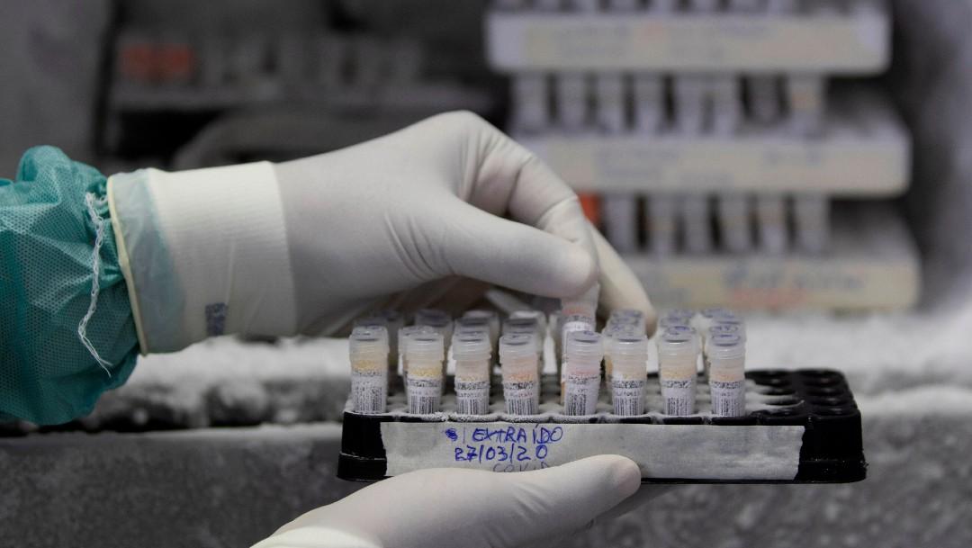 Foto; Comenzarán en septiembre a probar en humanos vacuna contra coronavirus