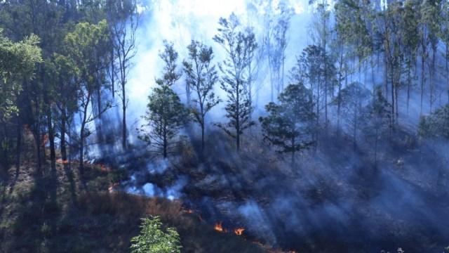Foto: Hay 50 incendios forestales activos en México, 27 de marzo de 2020, (@cofom_michoacan)