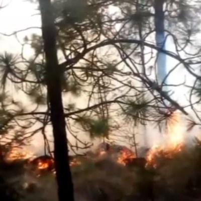 Incendios forestales consumen hectáreas de pastizales y arbustos en Puebla