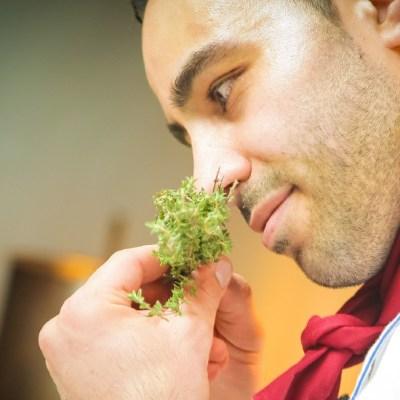 La pérdida del olfato podría ser un primer síntoma de COVID-19