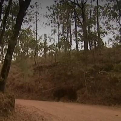 Alertan en Valle de Bravo por supuesto ataque de animal salvaje