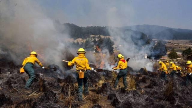 Foto: Suman 28 incendios forestales activos en México, 27 de marzo de 2020, (Cuartoscuro, archivo)