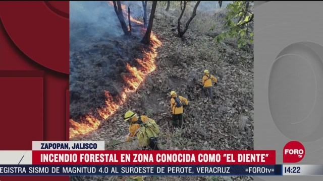 FOTO: 25 de abril 2020, controlan incendio forestal que se registro en el diente en zapopan