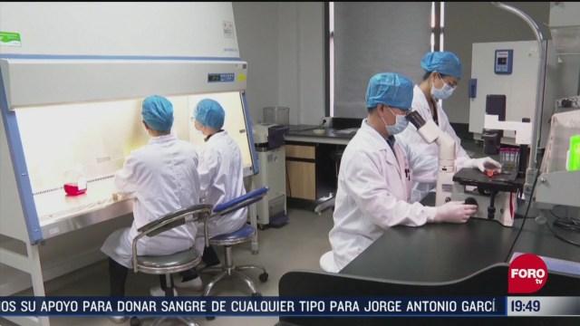 Foto: Coronavirus Especialistas Trabajan Para Crear Vacuna 8 Abril 2020