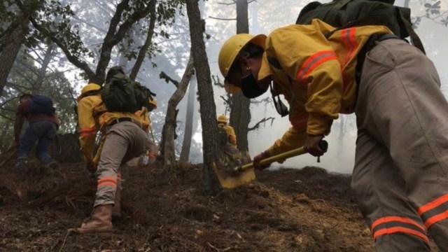 Foto: Bomberos y equipos de rescate combaten un incendio forestal en Oaxaca. Twitter/