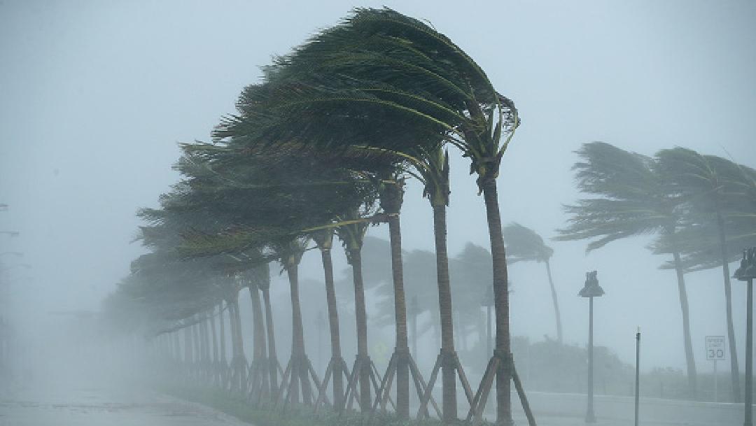 Foto: Pronostican una 'temporada activa' en el Atlántico 1 de abril de 2020, (Getty Images, archivo)