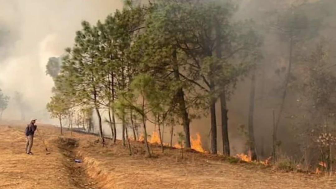 FOTO: Mueren seis personas por incendio forestal en Oaxaca, el 12 de abril de 2020