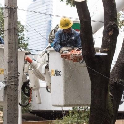 CFE no condonará pagos de energía eléctrica por coronavirus